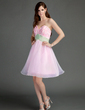 Empire Sweetheart Knee-Length Organza Homecoming Dress With Ruffle Sash Appliques Lace (022015746)