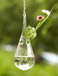Simple Hanging Glass Vase (128039215)