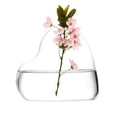 Hart Gevormd Glas Vaas